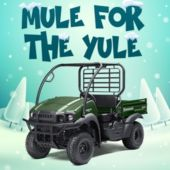 Mule for the Yule